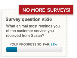A bad survey image snippet